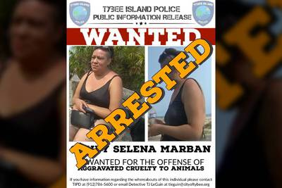 Woman charged after being seen throwing injured puppy into ocean, police say