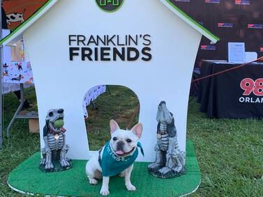 Franklin's Friends 10.26.19