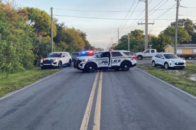 10-year-old girl trying to get to school bus dies in hit-and-run, police say